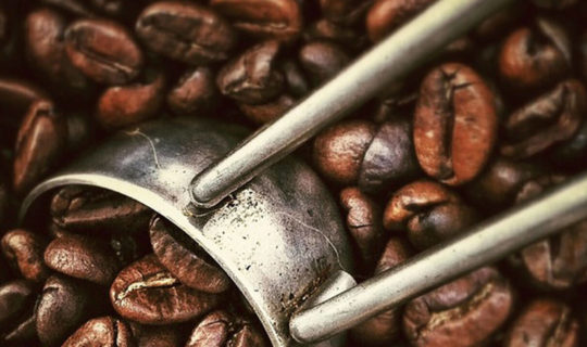 close-up-of-coffee-beans-from-colombia