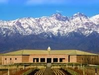 Best South America Wine Tours
