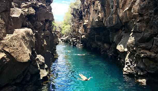 snorkeling and scuba diving in the galapagos