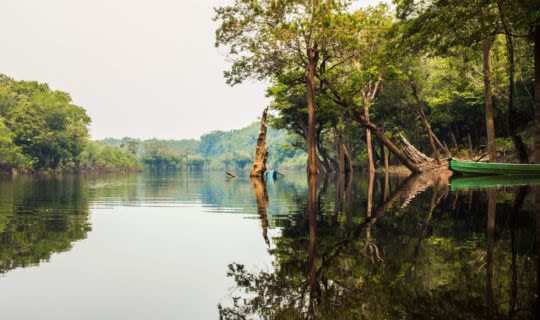 amazon river scenery with canoe