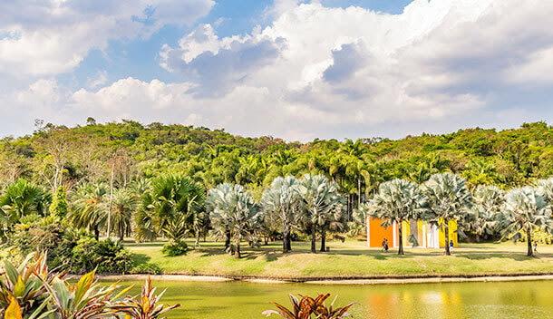 lake at inhotim art museum in brazil
