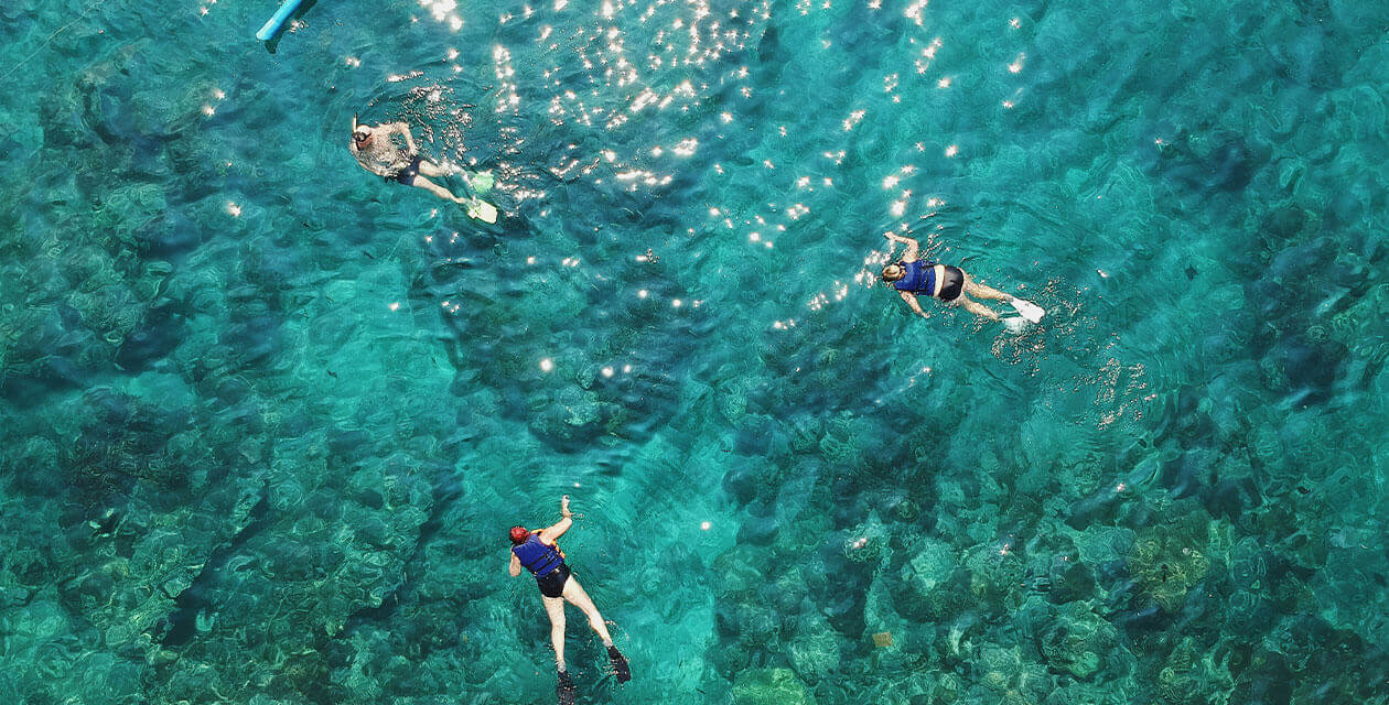 activities in brazil: snorkeling in the pantanal