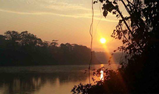 amazon-river-at-sunset-with-jungle-brush-on-luxury-cruise