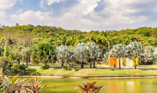 outdoor view of inhotim