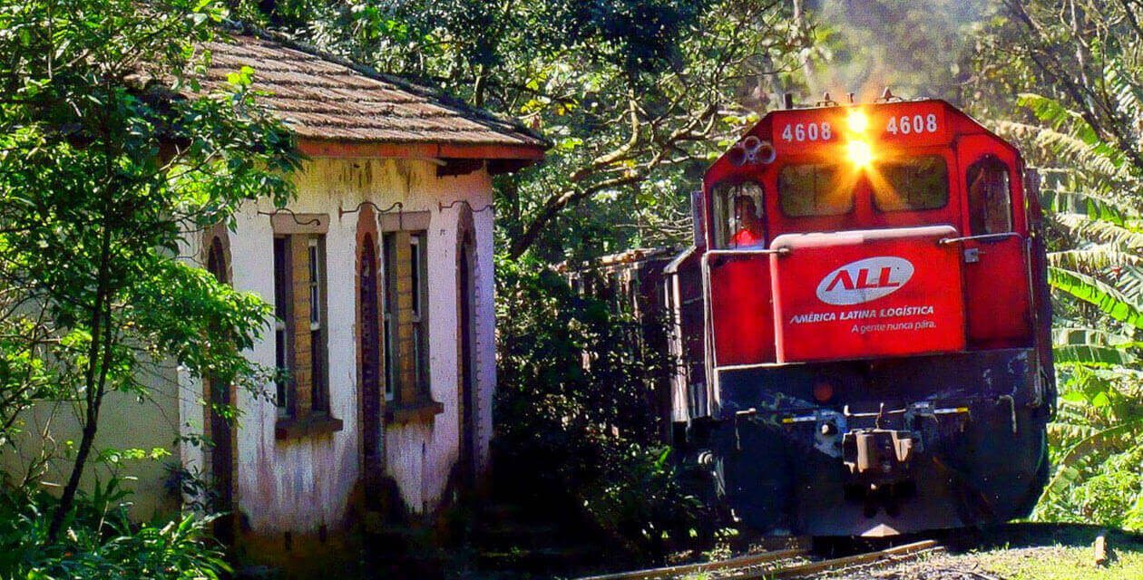 train in rainforest passing building
