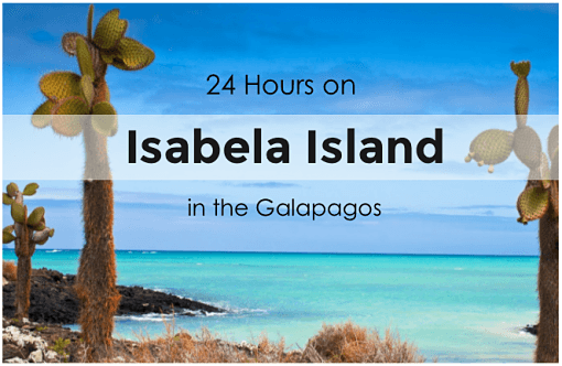 Isabel-Island-in-the-galapagos