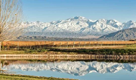 south-america-wineries-with-the-andes-mountain-range-behind