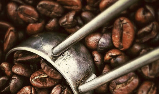 colombian-coffee-beans-being-scopped-by-spoon