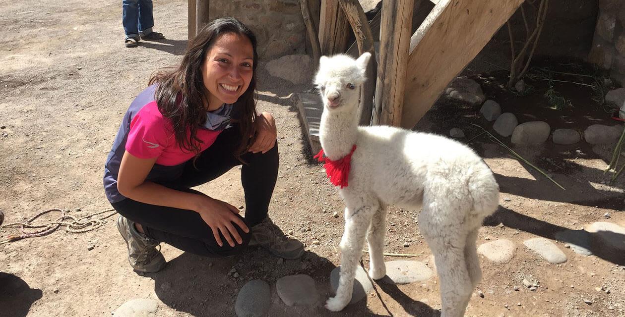 Travel Consultant Claudia petting a llama