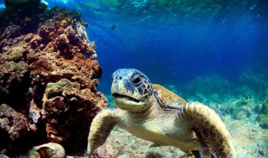 best-galapagos-islands-to-visit