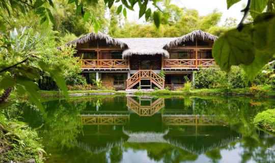 luxury-travel-lodge-surrounded-bu-jungle-and-small-lake