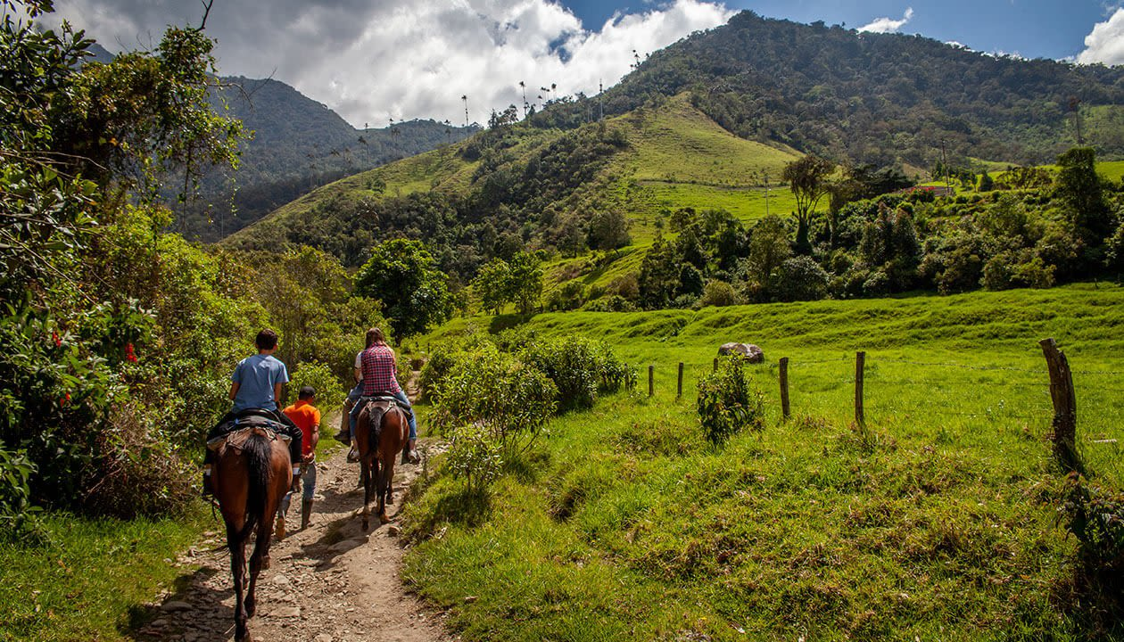 horseback riding in colombia's coffee region