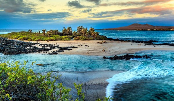Landscape of the Galapagos Islands