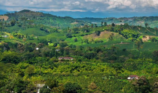 colombia-coffee-region-horizon-shot