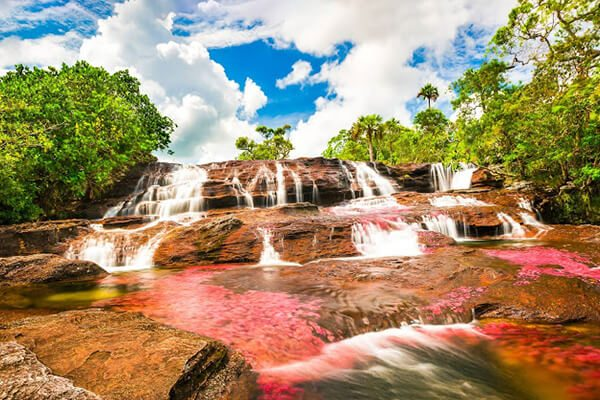 the-river-of-five-colors-colombia