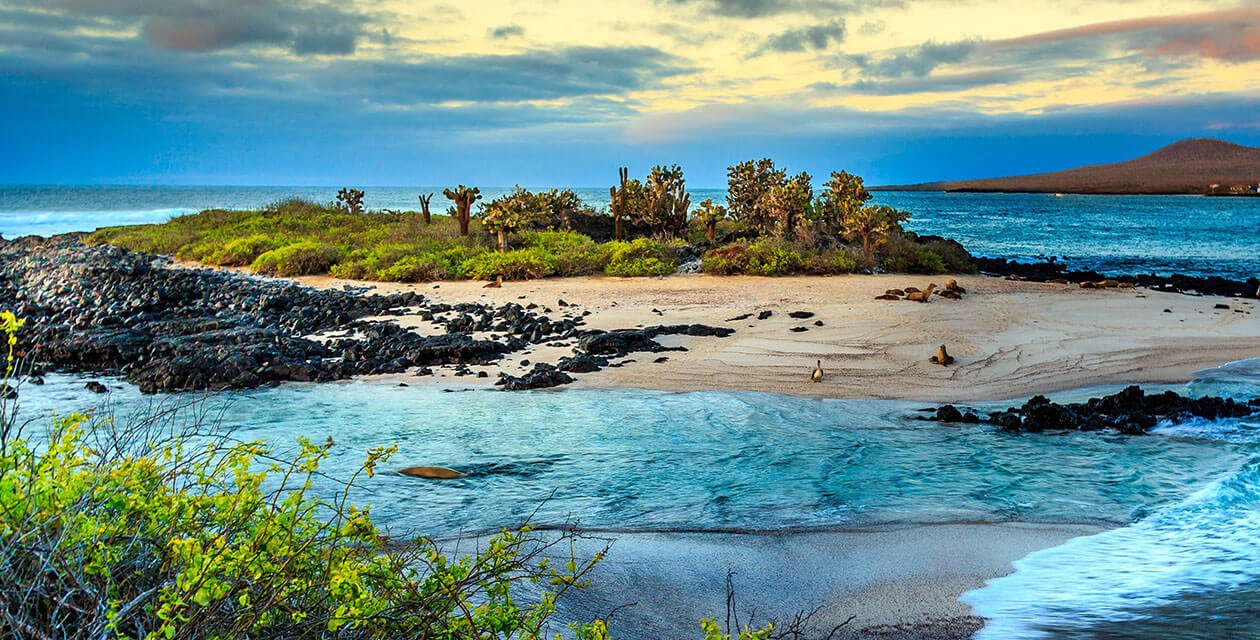 scenic island on galpagos