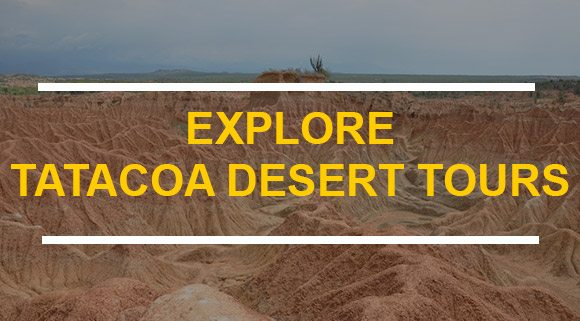 TATACOA-DESERT-TOURS-CUSTOM-FORM
