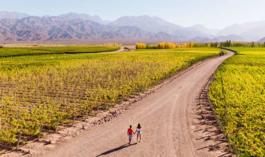 couple walking around a beautiful winery with mountain views
