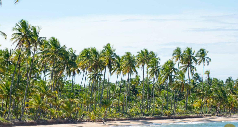 Kiaroa Eco-Luxury Resort private beach