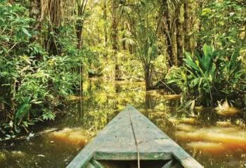 Canoeing on the Amazon river on a Peruvian Amazon tour