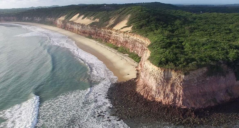 Beach cliffs and jungle