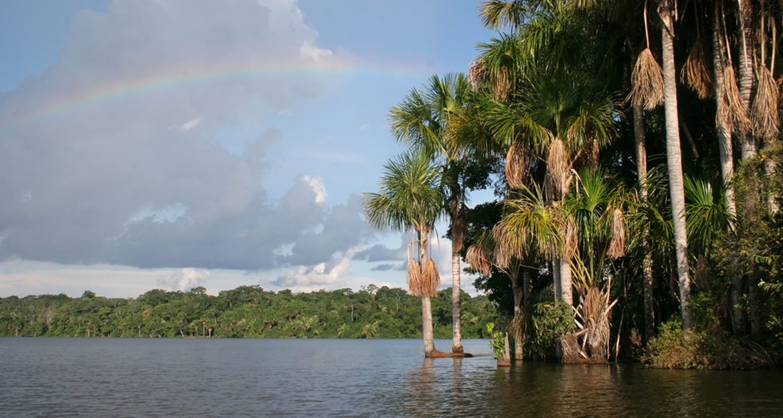 beautiful-lake-with-jungle-shore
