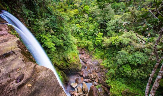 waterfall-featured-in-amazon-rainforest-tours