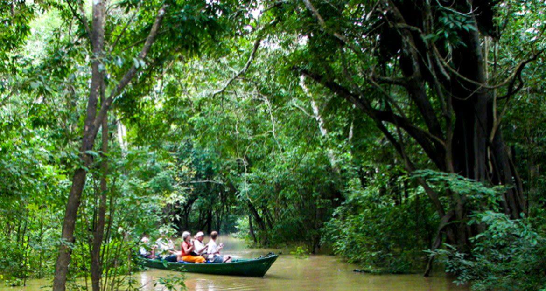 Group of travelers canoe through Amazon