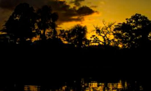 Sunset over shadowy banks of Amazon river