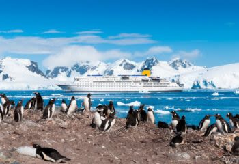 Penguins stand on shore near Antarctica cruise boat