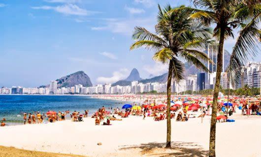 Palm trees on Copacabana