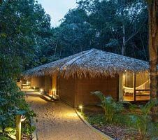 thatched roof hotel