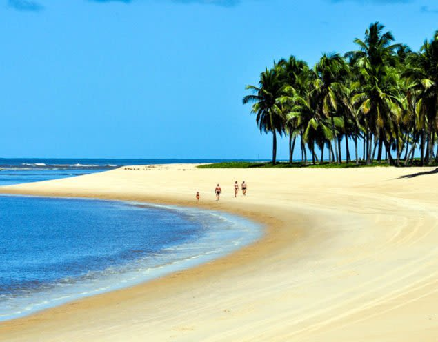 Group walks down Brazil beach past trees