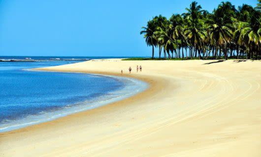 Group walks down Brazil beach past trees