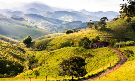 Misty hills of Brazil