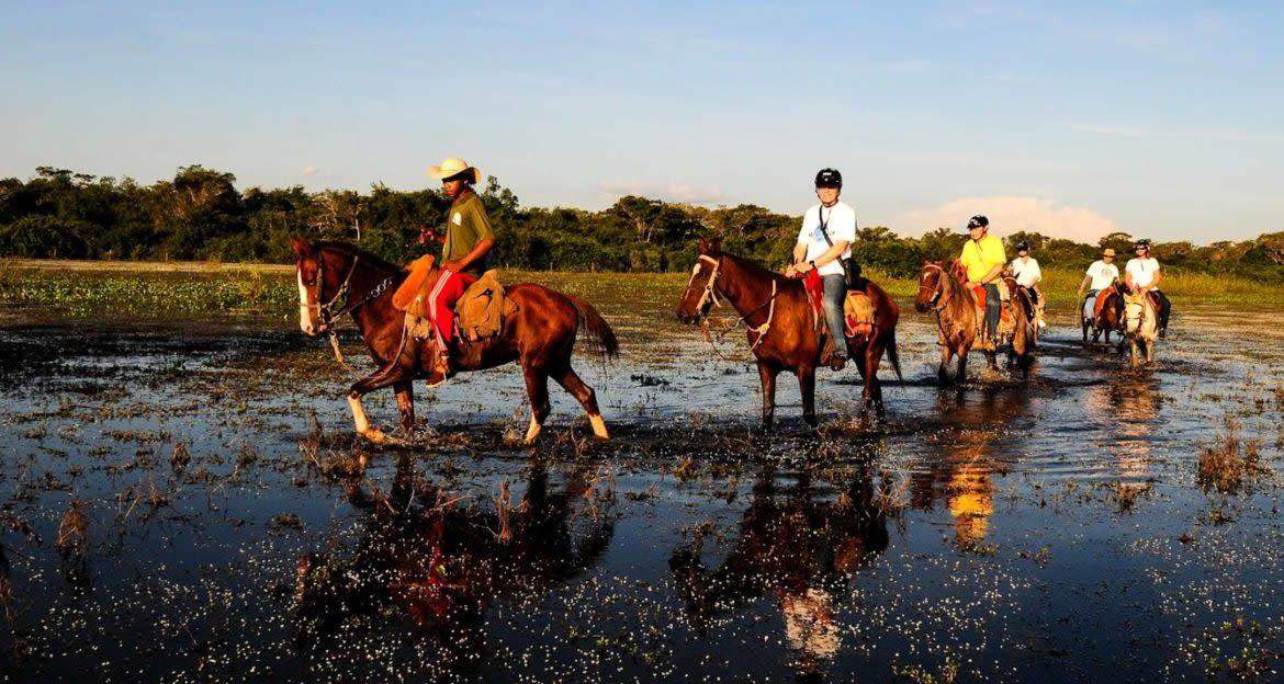 Travelers ride horses through Brazil wetland