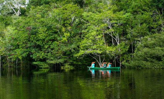 Travelers paddle canoe down Amazon river near forested bank