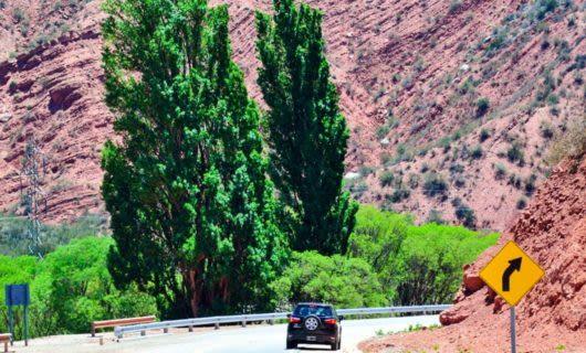Car drives down desert road between canyons