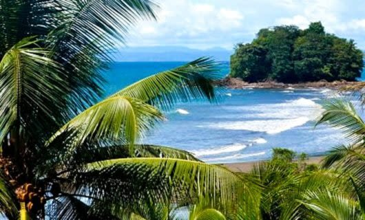 Colombia beach seen through fronds of tropical trees
