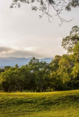 Beautiful green golf course in Colombia
