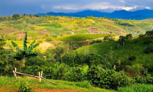 Hillside fields in Colombia