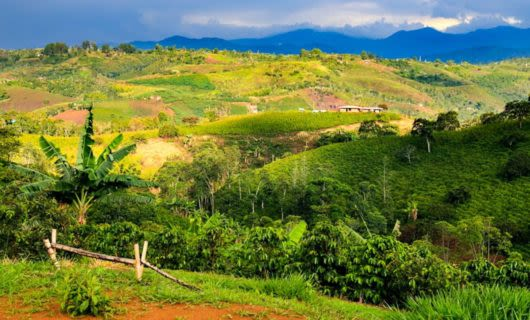 Rolling hills of Colombia