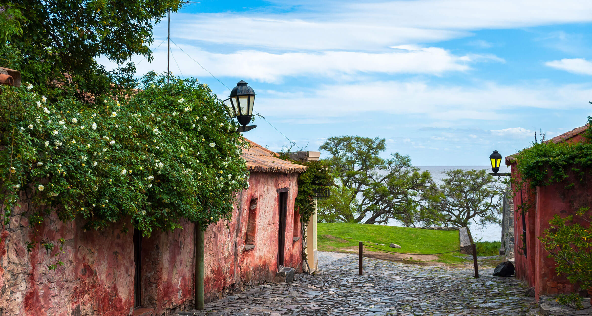Beautiful home and flowers during Uruguay travel.