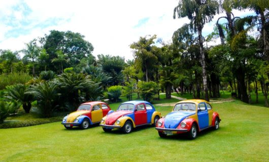 Multicolored Volkswagon Beetle cars