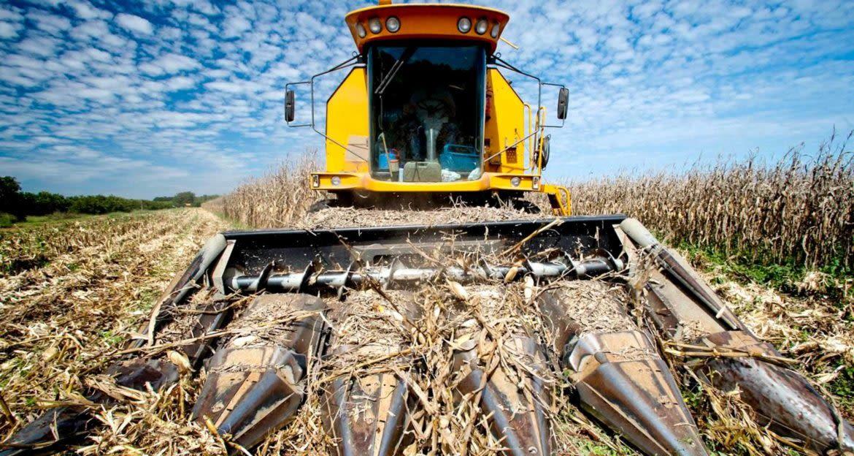 Corn harvester in Brazil
