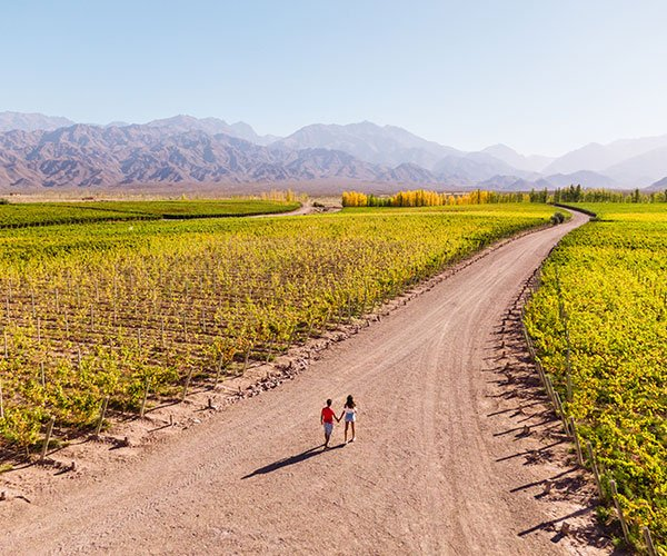 A couple experiences a Romantic buenos aires honeymoon in Argentina near a wine vineyard.