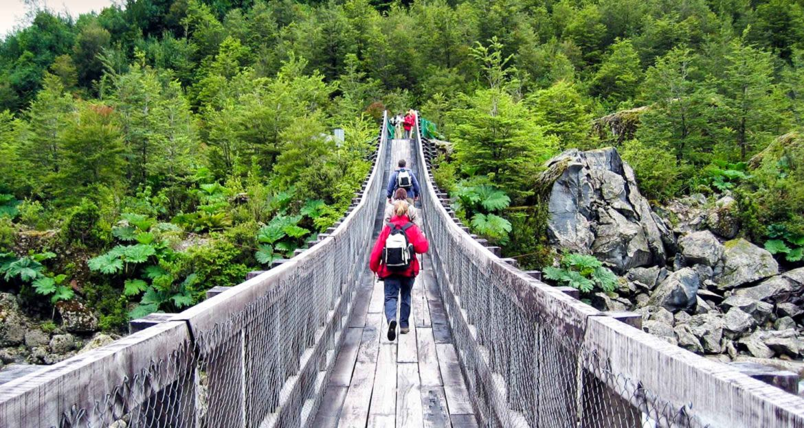 Hikers cross bridge into forest