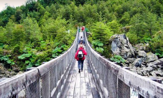 Hikers cross bridge into forest