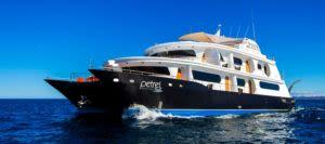 Petrel Galapagos Cruise Ship voyage