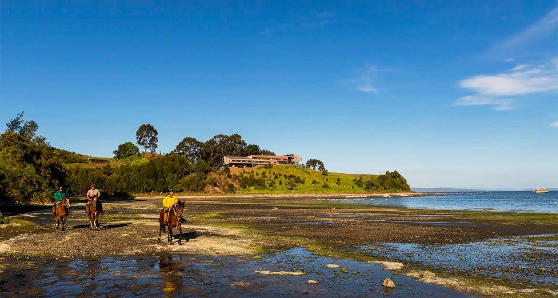 Travelers ride horses along coast